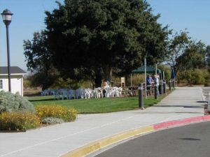 photo of picnic area